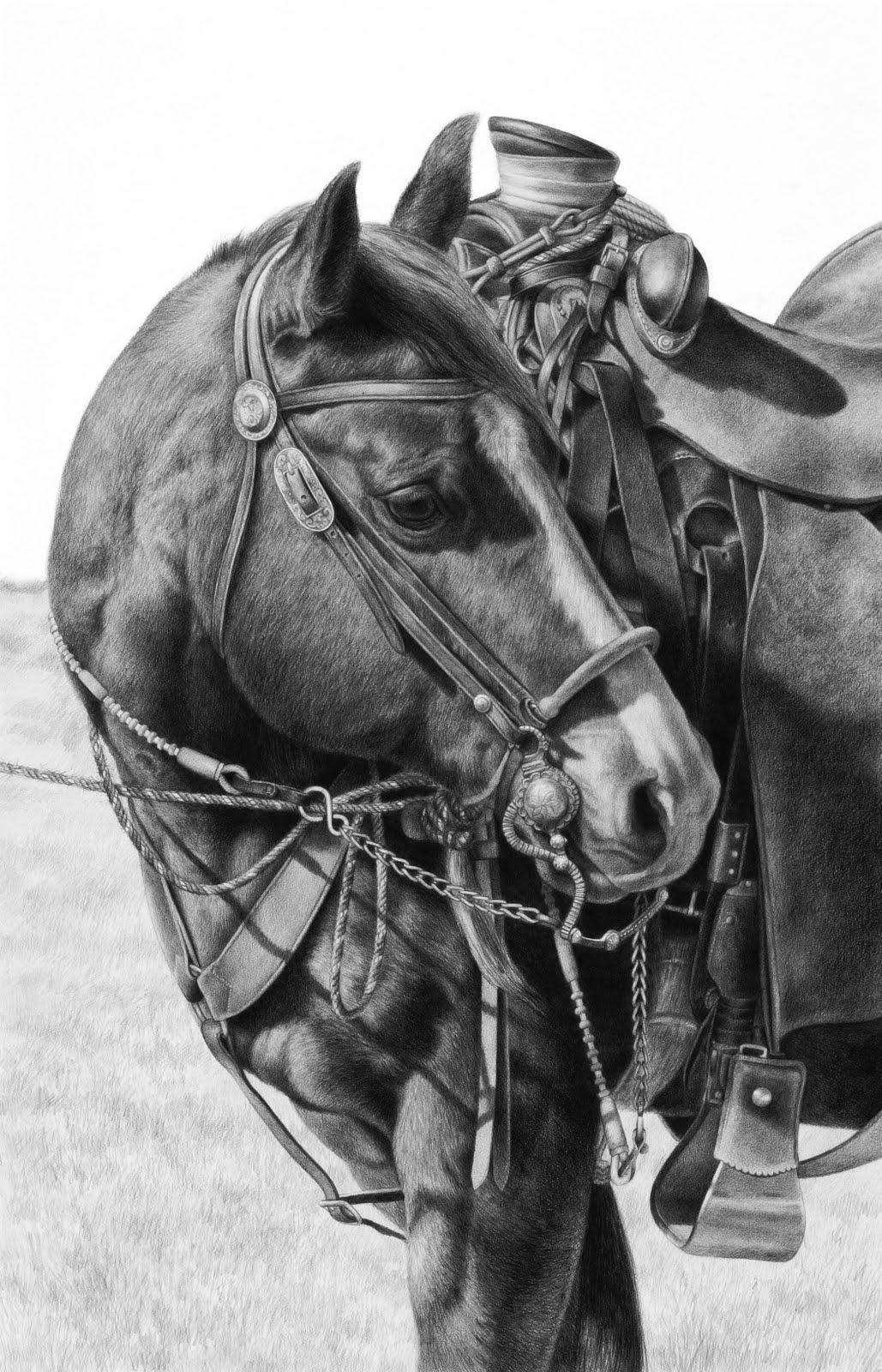 Horse drawing | Horse Happy | Pinterest | Coloring, Pencil ...  |Horse Art Drawings